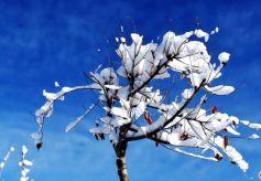 甘肃民乐谱写着山乡四季旅游的原生态篇章