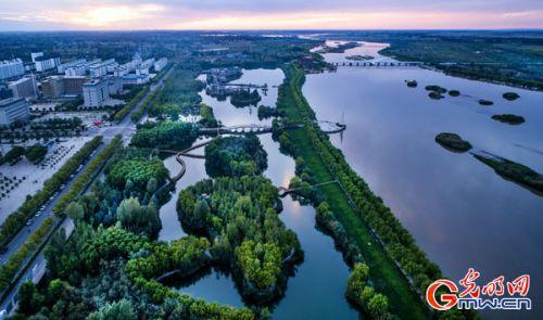 《高台湿地》陶明摄
