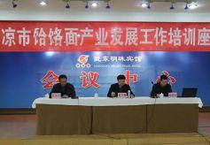 甘肃平凉市饸饹面产业发展工作培训座谈会在陇东明珠宾馆召开