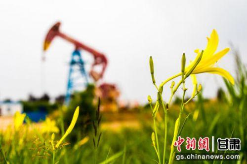 以能源化工为主导的工业经济是庆阳发展的重要支撑。图为庆阳石油采油二厂井场。