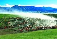 山丹县农特产品展示展销推介会在北京市凯晨世贸中心启动