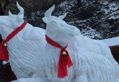 甘肃宕昌:冰雪节让冬季美景不再沉睡