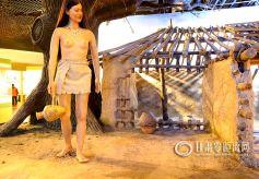 甘肃省博物馆内的彩陶