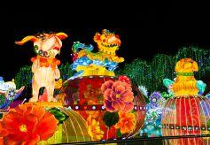 甘肃省图文化志愿者带领盲人读者走进花灯世界