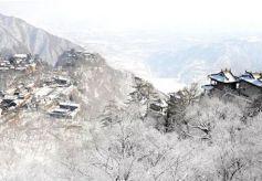 康县:全力助推乡村旅游发展