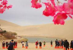 甘肃敦煌月牙泉畔柳绿花红 游客酣畅春日沙海