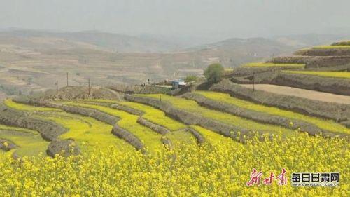 第三届甘肃·会宁油菜花文化旅游节 4月29日开幕