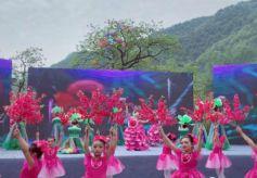 甘肃省陇南市康县乡村文化旅游节来了