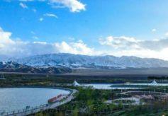 """甘肃河西高原雪山与茵茵绿树""""相伴""""景色美"""