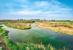 兰州新区秦王川国家湿地公园实力圈粉