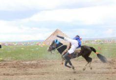 甘肃华锐藏区办传统赛马节:展示民族文化 增进人文交流