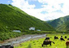 甘肃甘南州:全域旅游 秀美家园