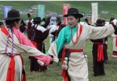 第三届拉卜楞则柔大赛在桑科草原举行