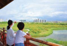 秦王川国家湿地公园提升改造项目即将完工