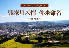 张家川县区域公共品牌名称征集活动等你来战!