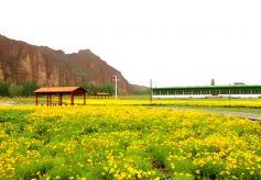 甘肅美術精品展在敦煌國際會展中心舉辦