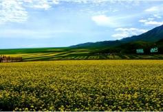 张掖市民乐县全域旅游品牌创建硕果累累