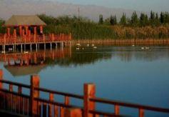 张掖:秋日湿地风景这边独好
