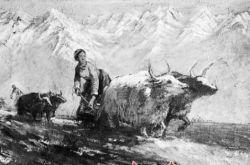 甘肃民俗风情写生的历史路径与文化图景