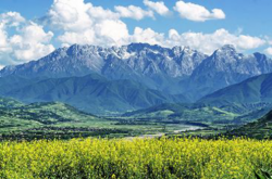甘南卓尼:百年藏寨尼巴村