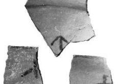 大地湾黑色符号,最早的文字