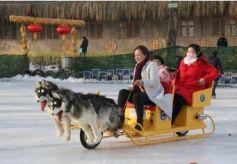 甘肃省临夏市第二届冬春季乡村文化旅游活动启动