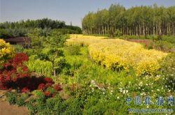 甘州區大力推進全域旅游發展綜述