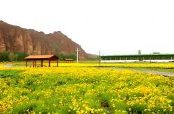 甘肃省启动暂退旅行社旅游服务质量保证金工作
