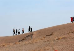 甘肃张掖:沙漠公园恢复开放迎春游