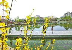 春暖花开走出家门踏青赏花 兰州市区景点推荐