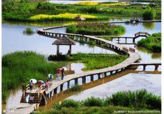 甘肃:所有旅游景区只开放室外区域