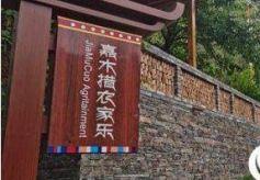 甘肃甘南州:擦亮生态底色让格桑花更美丽