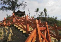 """两山再添""""打卡地""""西固马耳山建成5400米林区健身步道"""