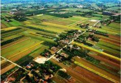 国家绿肥产业技术体系甘肃现场观摩会在武威召开