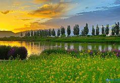 张掖甘州:湿地之城美丽家园
