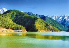 兰州市七里河区袁家湾村第三届生态文化旅游节开幕