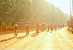 2020如意甘肃·自行车骑游行将于9月24日在武威发车