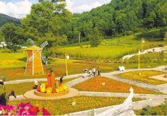 甘肃省暑期文化市场经营场所专项整治行动启动