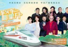 环县皮影及甘肃特产亮相《央视频号·文化志愿者专列》