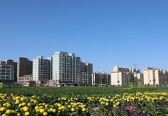 甘州:为城乡融合发展绘就生态底色