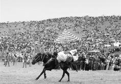 如意甘肃·香巴拉之夜房车露营嘉年华活动当周草原举行