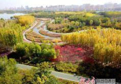 张掖芦水湾生态景区五彩斑斓