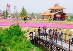 张掖市影视创作助推文旅产业高质量发展
