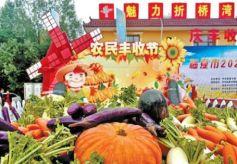 """甘肃省多地庆祝第三届""""中国农民丰收节"""""""