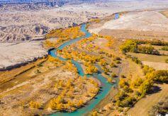 好美!疏勒河畔大地斑斓