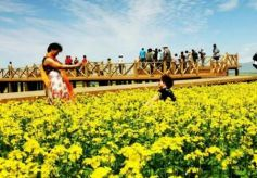 甘南藏族自治州建设生态文明小康村 旅游收入突破74亿元