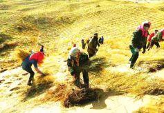 電影《八步沙》將作為中國共產黨建黨100周年獻禮影片展映