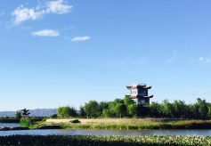 甘肃:推动文化和旅游业全面复苏和良性发展