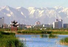 张掖市摄制的电影《爱在夏日塔拉》将登录央视电影频道