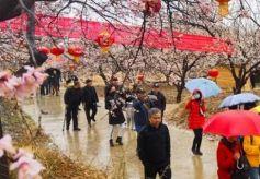 兰州十大休闲农庄推介活动在皋兰县九合镇举办
